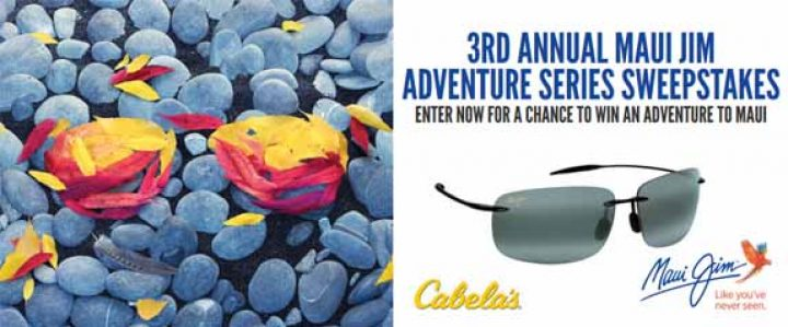cabelas-promotion