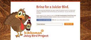 brine-for-a-juicier-bird