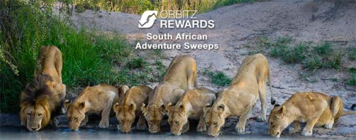 south-african-adventure-sweeps