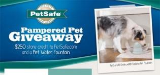 Petsafe Brand Pampered Pet Giveaway