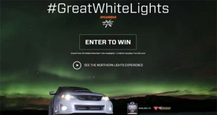 zXe #GreatWhiteLights Watch & Win Contest
