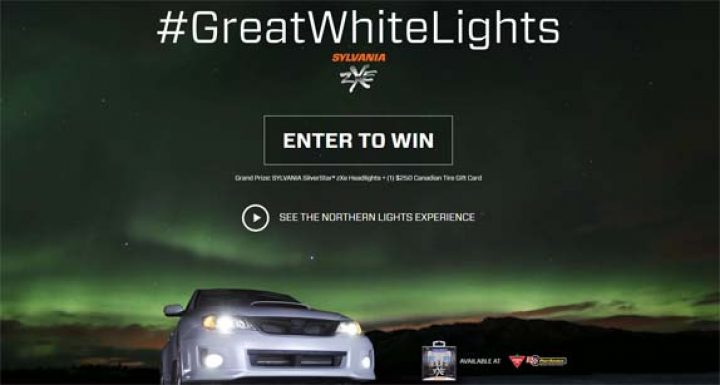 greatwhitelights