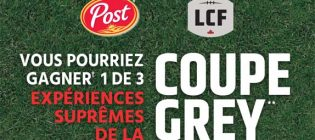 concours post lcf coupe grey