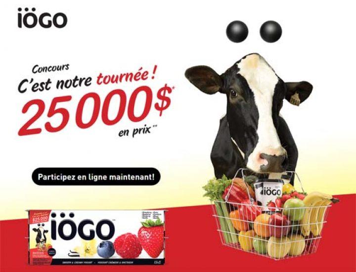iogo concours
