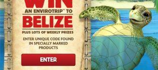 belize contest