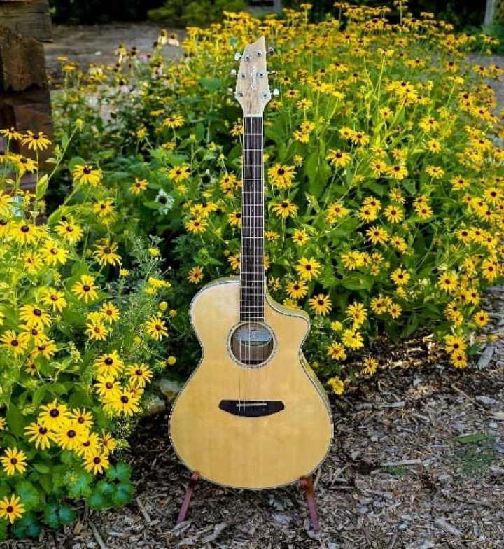 moore-guitar