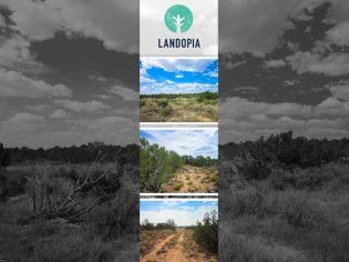 Landopia The Great Land Giveaway