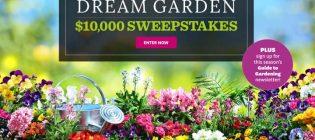 10000-contest