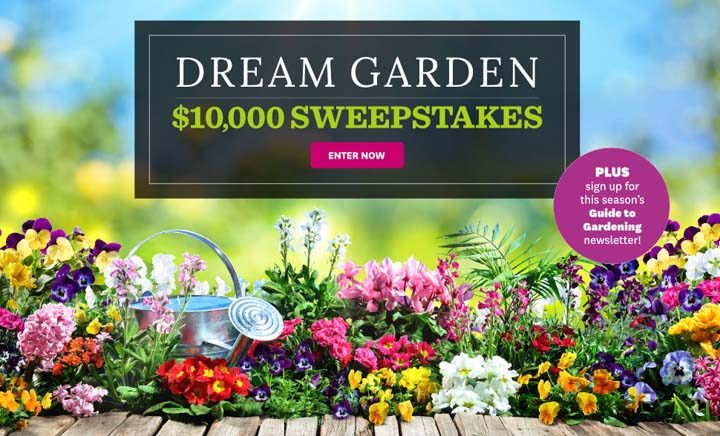 Better Homes And Gardens 10 000 Sweeps Sweepstakes Pit