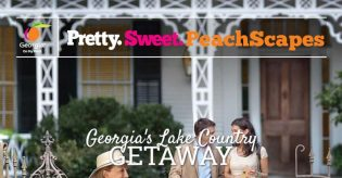 Navigate Media Peachscapes Sweepstakes