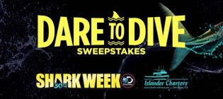 dare-to-dive-sweepstakes