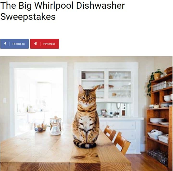 big-whirlpool-dishwasher-sweepstakes