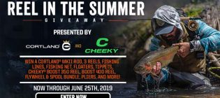 reel-in-the-summer-giveaway