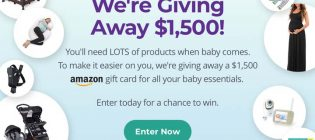 Baby Bump Giveaway